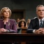Diane Represents Peter - The Good Wife