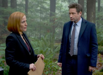 Watch The X-Files Season 11 Episode 8 Online