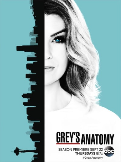Grey's Anatomy 13 poster