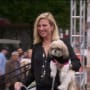 Showing Off the Dogs - The Real Housewives of New York City