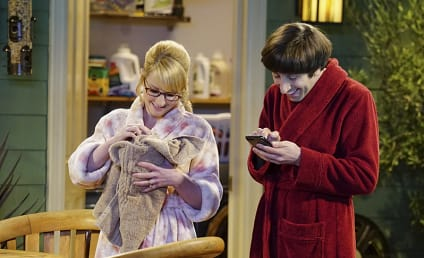 Watch The Big Bang Theory Online: Season 9 Episode 15