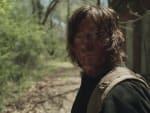 A Familiar Face - The Walking Dead