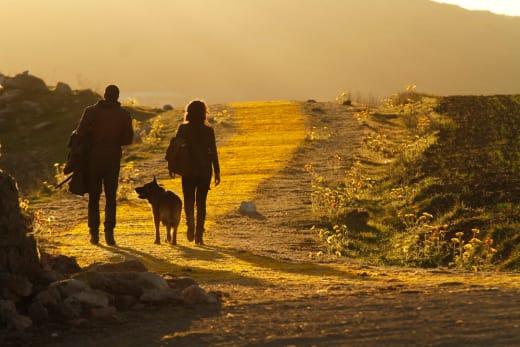 Follow the Yellow Brick Road - Emerald City Season 1 Episode 1