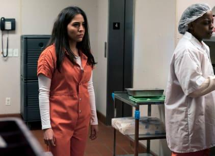 Watch Blindspot Season 2 Episode 20 Online