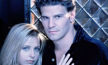 David Boreanaz Defends Buffy Reboot: What Did He Say?!