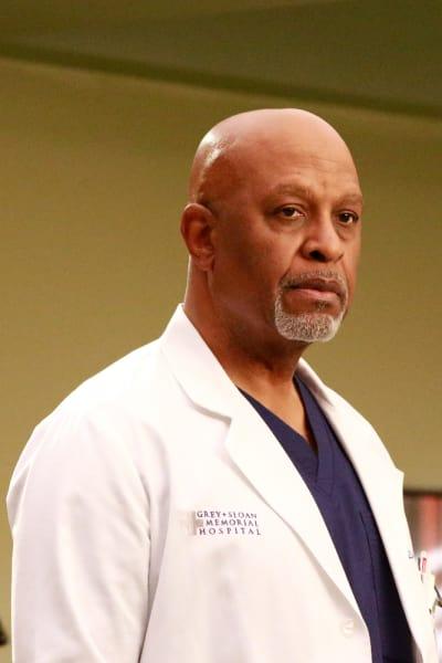 Team Richard - Grey's Anatomy Season 13 Episode 21