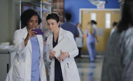 More Gossip - Grey's Anatomy Season 12 Episode 6