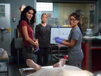 Rizzoli & Isles Season 5 Episode 18