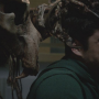 Teen Wolf: Watch Season 4 Episode 2 Online
