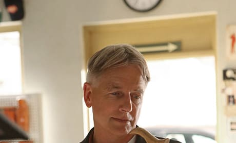 What grade would you give NCIS Season 11?