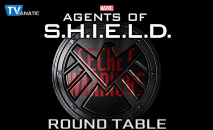 Agents of S.H.I.E.L.D. Round Table: Just Light Hive On Fire