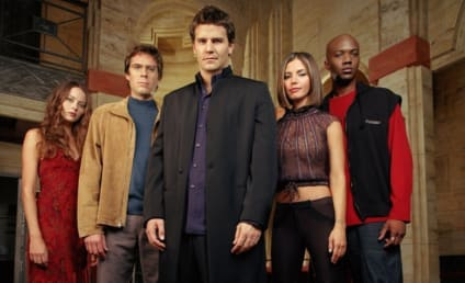 Angel Reunion: David Boreanaz Teases 'Something Is In the Works'