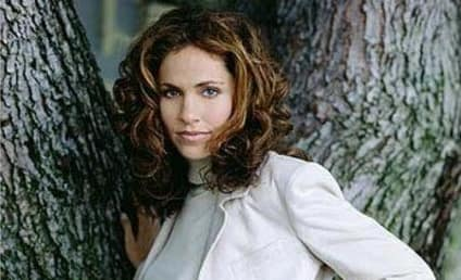 Amy Brenneman: The TV Guide Interview