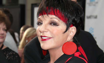 Liza Minnelli to Sing as Herself on Smash