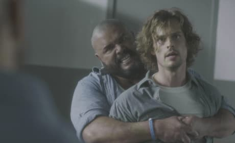 Keeping Reid Safe - Criminal Minds