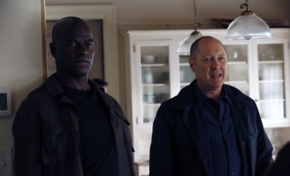The Blacklist Season 5 Episode 4 Review: The Endling