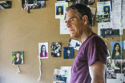 Pride Looks at Fans - NCIS: New Orleans