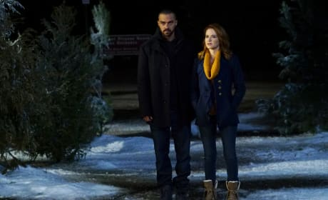 Out In the Cold - Grey's Anatomy Season 13 Episode 16