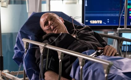 The Blacklist Season 2 Episode 19 Review: Leonard Caul