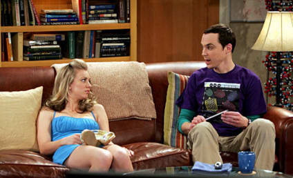 Will Big Bang Theory's Penny and Sheldon Hook Up?