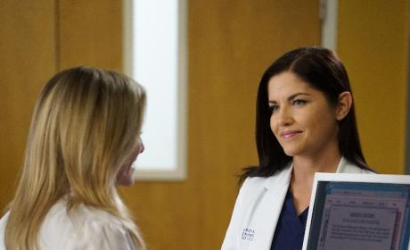 Pursuit of Happiness - Grey's Anatomy Season 13 Episode 14