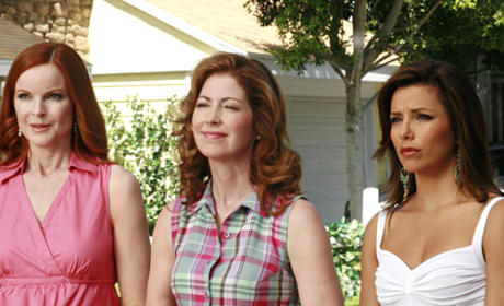 Trio of Housewives