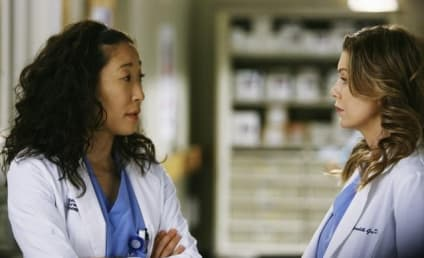 Grey's Anatomy Spoilers: A Difficult Decision