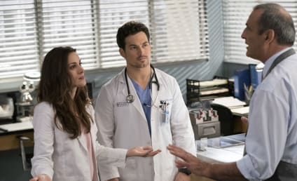 Grey's Anatomy Promotes Two Actors to Series Regular - Who's Exiting to Join Station 19?
