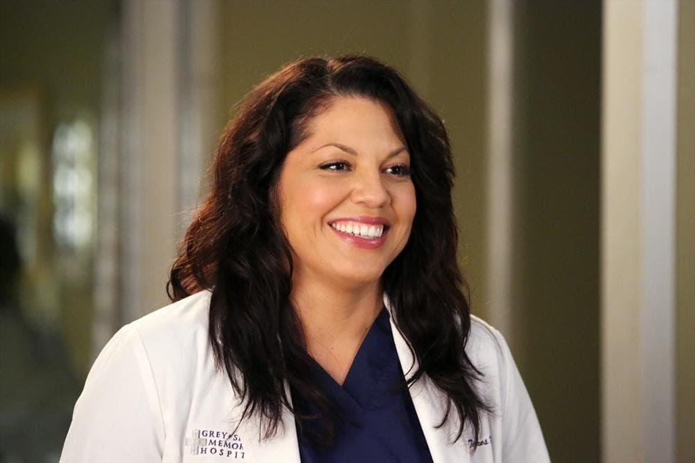 Callie Torres Snapshot Greys Anatomy Season 11 Episode 8 Tv Fanatic