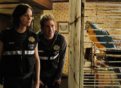 Watch CSI Season 11 Episode 9 Online
