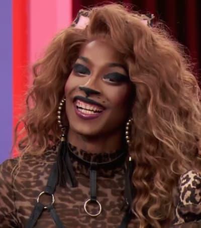 Cat Mini Challenge - Tall - RuPaul's Drag Race Season 12 Episode 9