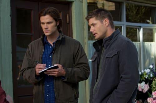 Pair of Supernaturals