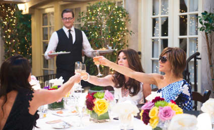 The Real Housewives of Beverly Hills Season 6 Episode 1 Review: Life's a Pitch