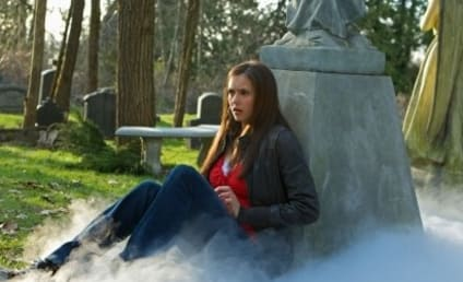 L.J. Smith Pleads for The Vampire Diaries Viewers