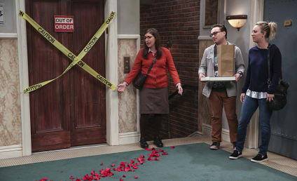 The Big Bang Theory Season 10 Episode 8 Review: The Brain Bowl Incubation