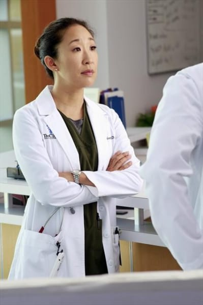 Doctor Cristina Yang Photo