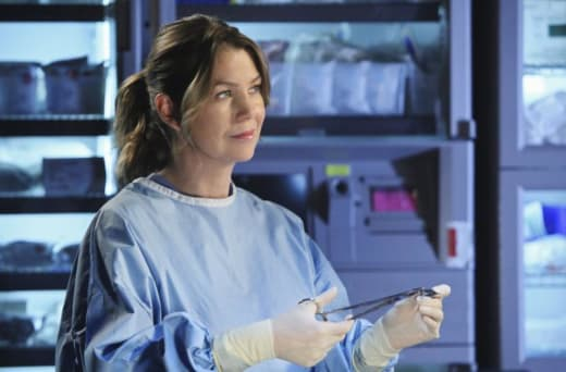 Doctor Meredith Grey Picture