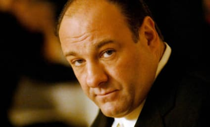 James Gandolfini Dies of Heart Attack; Sopranos Actor was 51