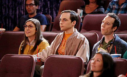 The Big Bang Theory Review: Homeostasis For Now