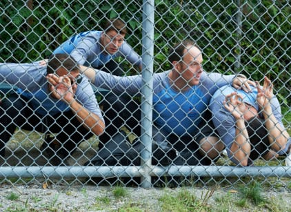 Watch Rookie Blue Season 6 Episode 6 Online