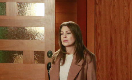 Meredith Goes Home - Grey's Anatomy Season 11 Episode 22