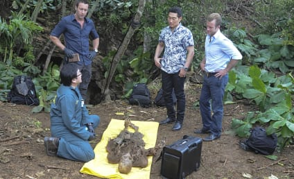 Hawaii Five-0 Season 6 Episode 1 Review: Do Not Disturb