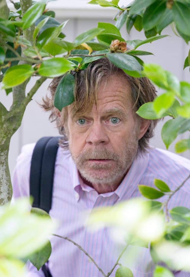 Through The Looking Bush - Shameless Season 9 Episode 1