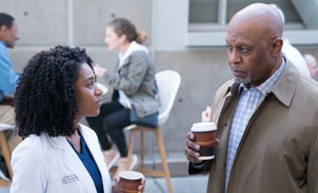 Richard's Scrutiny - Grey's Anatomy Season 14 Episode 15