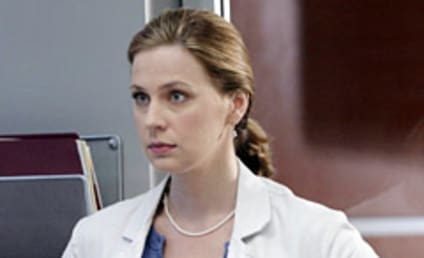 House Producers Consider Return of Amber, Diss Grey's Anatomy