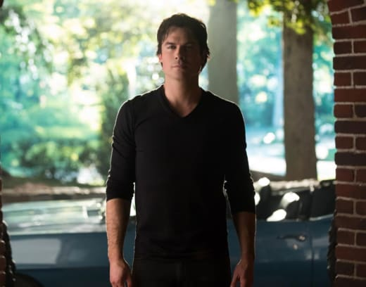 Is Damon Ready for Elena's Return? - The Vampire Diaries