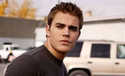 Vampire Diaries Casts Paul Wesley as Final Lead Vampire