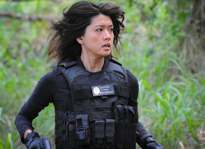 Watch Hawaii Five-0 Season 6 Episode 21 Online