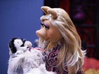 Reevaluating Relationships - The Muppets