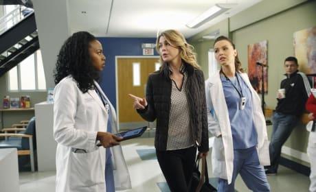 Meredith Advises Stephanie